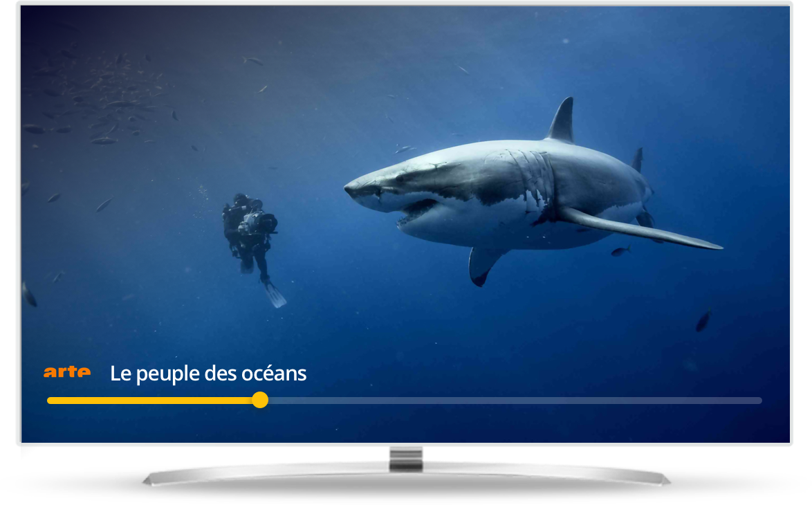 Regarder la tv en direct