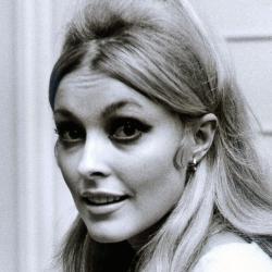 Sharon Tate - Actrice