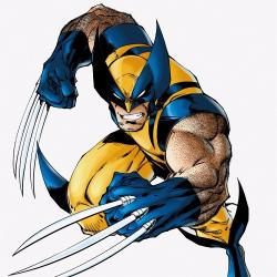Wolverine - Personnage d'animation