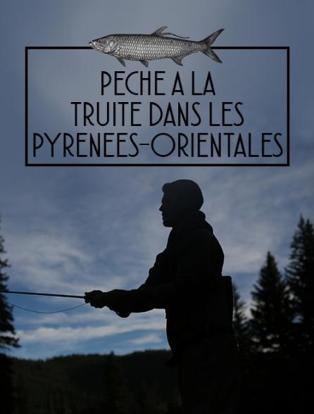 Pêche à la truite dans les Pyrénées-Orientales