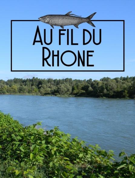 Au fil du Rhône, traque des carnassiers