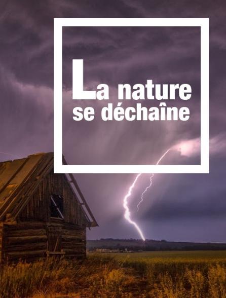La nature se déchaîne