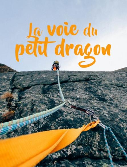 La voie du petit dragon