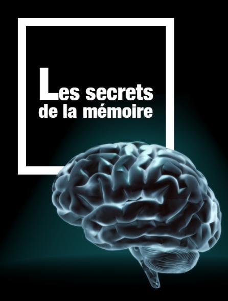 Les secrets de la mémoire