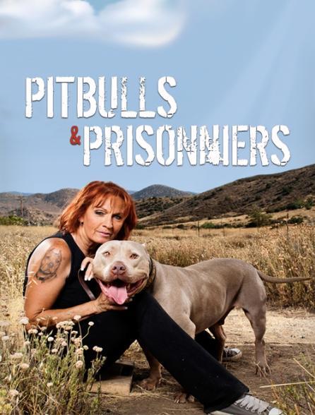 Pitbulls et prisonniers